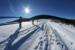 草甸冬天 库存照片