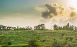 草甸和多云天空 免版税库存图片
