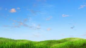 草甸和天空背景 皇族释放例证