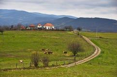 草甸和小山在Miroc山晚秋天 库存图片
