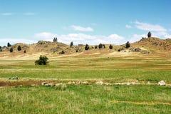 草甸和小山在Otago中央路轨足迹,新西兰 库存图片