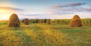 草甸和干草堆 免版税库存图片