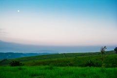 草甸和月亮 免版税库存图片