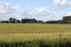 草甸和树在波罗的海海岛乌瑟多姆岛,德国上,在蓝天与白色云彩和一个铁路堤防下在ho 免版税图库摄影