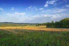 草甸和森林反对天空蔚蓝与轻的白色云彩 库存照片