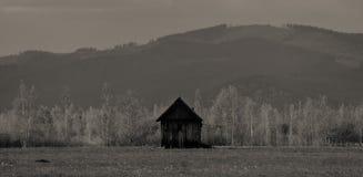 草甸和瑞士山中的牧人小屋以山为背景 库存图片