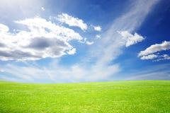 草甸和美丽的天空在阳光期间 免版税库存图片