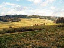 草甸和谷在山 库存图片