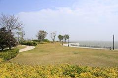 草甸在海边 图库摄影