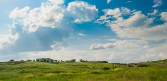 草甸在蓝天下 库存图片