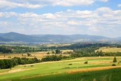 草甸夏天晴朗的天气 库存图片