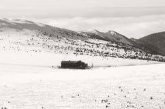 草甸瑞士山中的牧人小屋,大山,捷克 免版税库存图片