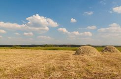 草甸的两个干草堆 免版税库存图片