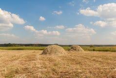 草甸的两个干草堆 库存照片