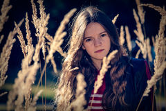 草甸的女孩 库存图片