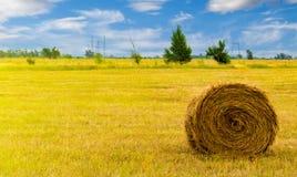 草甸的干草堆 免版税库存照片