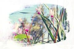 草甸的梦想和抽象图象有绿色年轻草的 免版税图库摄影