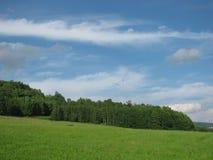 草甸的看法和森林和天空 免版税库存照片