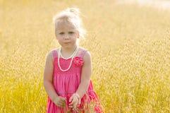 草甸的美丽的女孩 免版税库存照片