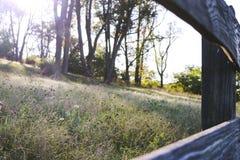草甸看法通过木篱芭 免版税库存图片