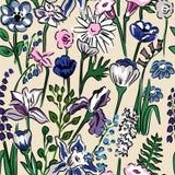 草甸花的花卉样式 库存例证