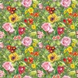 草甸花,夏天草本 无缝花卉的模式 水彩 免版税图库摄影