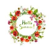 草甸花-鸦片,夏天草 花卉圆的花圈 水彩 免版税库存照片