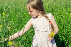 草甸领域采摘花的小女孩 免版税图库摄影