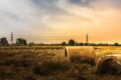 草甸风景有具体管子和天空的在日落期间在夏天 库存图片