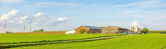 草甸/领域包围的农厂全景 免版税库存照片