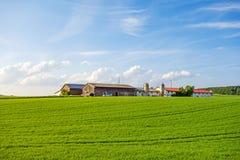 草甸/领域包围的农场 图库摄影