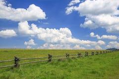 草甸/风景的风景看法 免版税库存图片