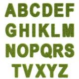 草的字母表 图库摄影