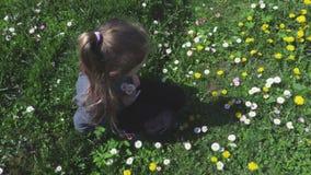 草的小女孩在花附近 股票录像