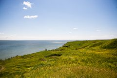 绿草的海和领域 免版税库存照片