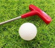 草的红色轻击棒与球 免版税库存照片