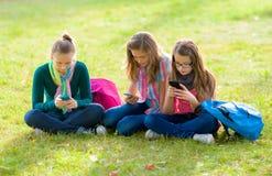 草的青少年的女孩,使用他们的手机 免版税库存照片