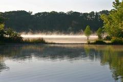 草皮雾的湖 库存图片