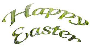 草纹理愉快的复活节字法在白色背景的 库存图片