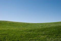 草绿色小山 库存图片