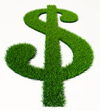 绿草美元标志 免版税库存照片