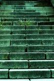 草老台阶石头方式 免版税库存照片