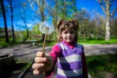 绿草背景的小女孩用蒲公英 图库摄影