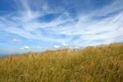 草草甸山天空 库存照片
