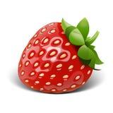 草莓传染媒介 图库摄影