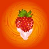 草莓和奶油漩涡 库存照片
