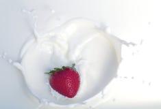 草莓和奶油特写镜头红色甜果子 免版税库存照片