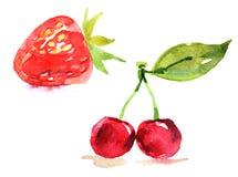 草莓和樱桃,在白色背景的水彩例证 库存图片