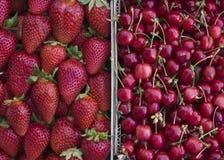 草莓和樱桃 库存图片