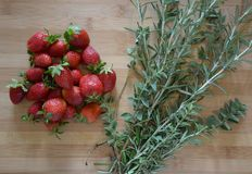 草莓和草本 免版税库存图片